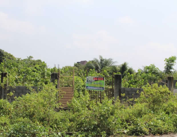 Fully Fenced 1450sqm Land with gate